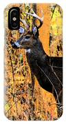 Buck Scouting For Doe IPhone Case