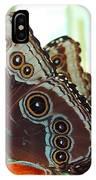 Buckeye Butterfly IPhone Case