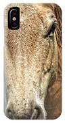 Buckskin Stallion IPhone Case