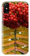 Buffalo Berries IPhone Case