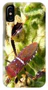Bug On Stalk Of The Wooly Mullein IPhone Case