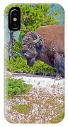 Bull Bison Near Mud Volcanoes In Yellowstone National Park-wyoming IPhone Case
