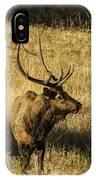 Bull Elk In Meadow IPhone Case