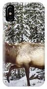 Bull Elk In The Woods IPhone Case