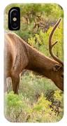 Bull Elk Profile IPhone Case