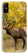 Bull Elk With Autumn Colors IPhone Case
