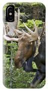 Bull Moose Shedding Velvet IPhone Case