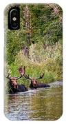 Bull Moose Summertime Spa IPhone Case