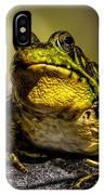 Bullfrog Watching IPhone Case