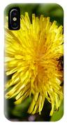 Bumble Bee And Dandelion IPhone Case
