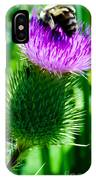 Bumble Bee On Bull Thistle Plant  IPhone Case