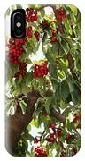 Bumper Crop - Cherries IPhone Case