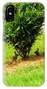 Bunnies In A Bush IPhone Case
