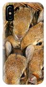 Bunny Babies IPhone Case