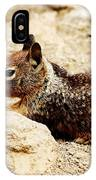 Bunny Squirrel IPhone Case