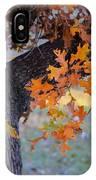 Bur Oak Tree In Autumn IPhone Case