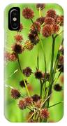 Bur-reed IPhone Case