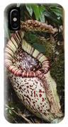 Burbidges Pitcher Plant Sabah Borneo IPhone Case