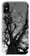 Burr Oak Beauty IPhone Case