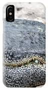 Busch Gator IPhone Case