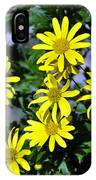Bush Daisy  IPhone Case