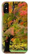 Busse Woods Fall Color IPhone Case