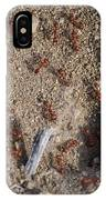 Busy Ants IPhone Case