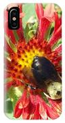 Busy As A Bee IPhone Case