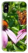 Butterflies On Echinacea Flowers IPhone Case