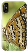 Butterfly 18 IPhone Case