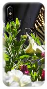 Swallowtail Butterfly On White Petunia Flower IPhone Case