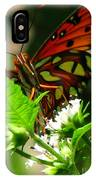 Butterfly Art IPhone Case