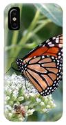 Butterfly Garden - Monarchs 07 IPhone Case