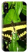 Butterfly Generations IPhone Case