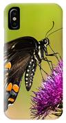 Butterfly In Nature IPhone Case