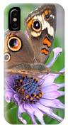 Butterfly On African Daisy IPhone Case