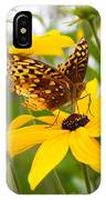 Butterfly On Blackeyed Susan IPhone Case