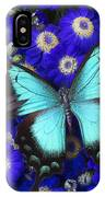 Butterfly On Cineraria IPhone Case