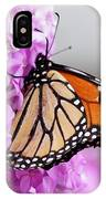 Butterfly On Phlox Flowers IPhone Case