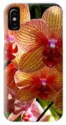Butterfly Orchids IPhone Case