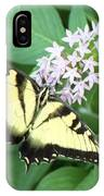 Butterfly - Swallowtail IPhone Case