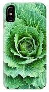 Cabbage Leaves IPhone Case