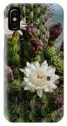 Cacti Bouquet  IPhone Case