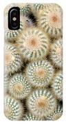 Cactus 35 IPhone Case