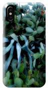 Cactus Family Almeria Region Spain 2013 January IPhone Case
