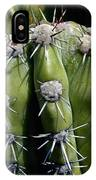 Cactus In Hawaii IPhone Case