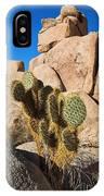 Cactus In Hidden Valley IPhone Case