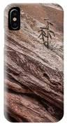 Cactus In Red Rocks IPhone Case