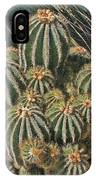 Cactus In The Garden IPhone Case