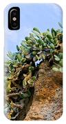 Cactus On A Cliff IPhone Case